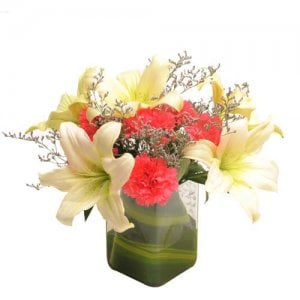 Contemporary Elegance - Send Carnations Flowers Online