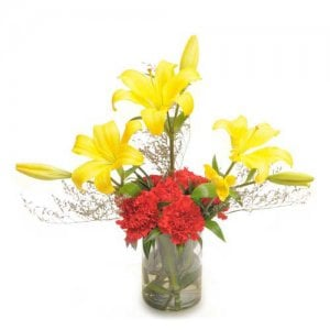 Carnations N Lilies - Send Carnations Flowers Online
