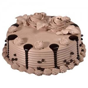 ChocoChip Cake Half Kg - Birthday Cake Online Delivery - Same Day Delivery Gifts Online