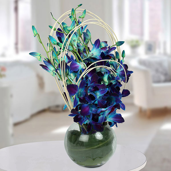 Age Of Innocence Blue Orchids by Way 2 Flowers