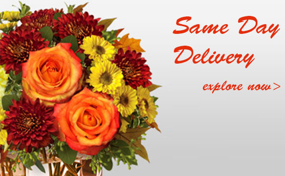 Flowers and Cake Same day Delivery